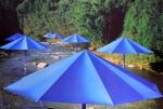 Christo: The Umbrellas, Japan - USA 1991 (6)